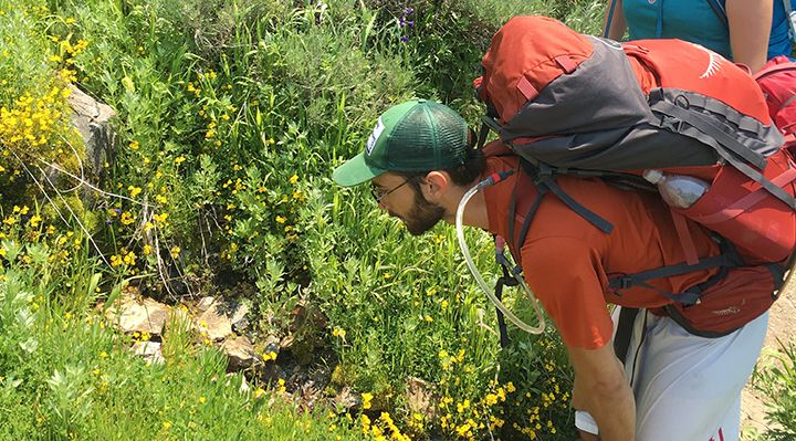 A backpacker stopping to observe wildflowers