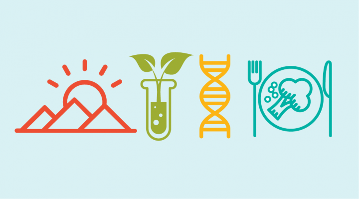 Icon of mountain, plant, DNA, and a plate of food