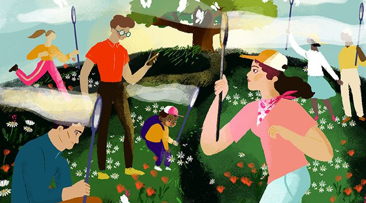 An illustration of people gathering butterflies with nets