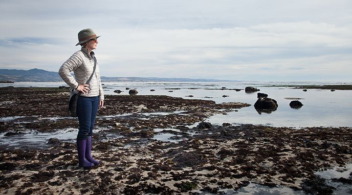A person standing at tide pools looking out into the ocean