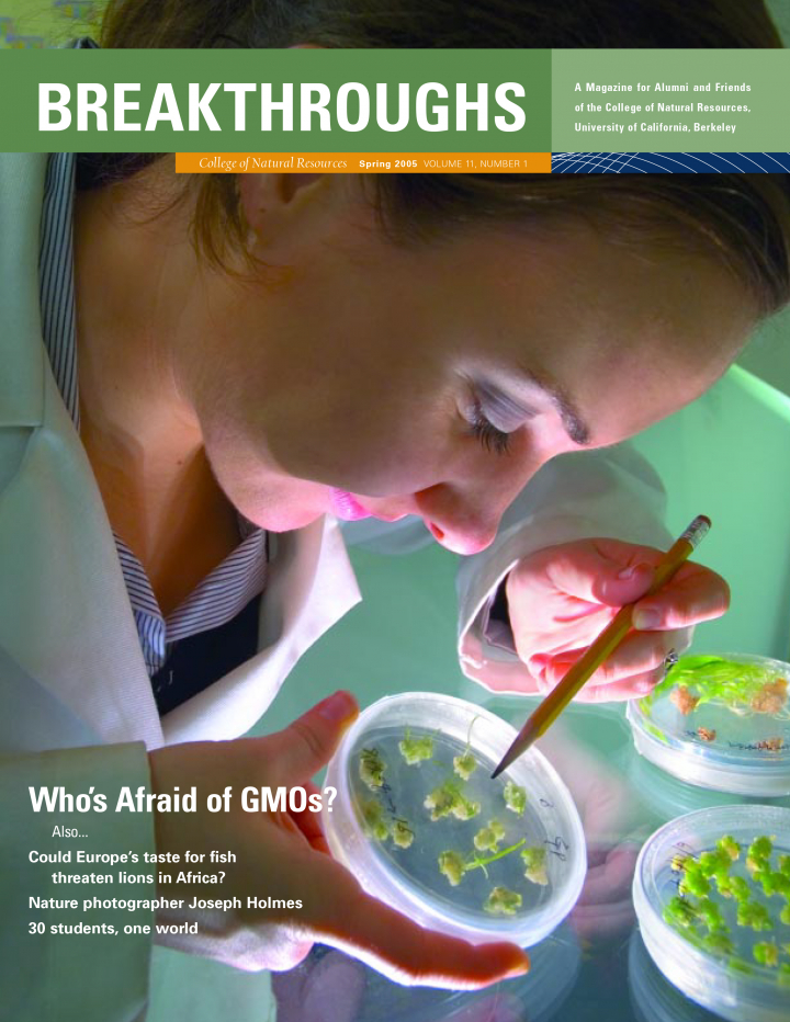 Cover of Breakthroughs Spring 2005, A scientist examining a petri dish